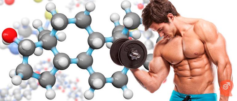 Как естественным путем повысить тестостерон