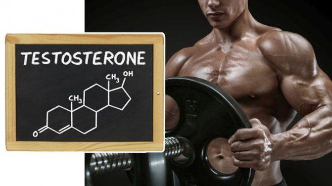 Как повысить тестостерон - 9 естественных способов повысить уровень тестостерона в организме мужчин